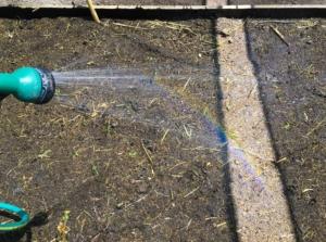 L'arcobaleno nell'orto