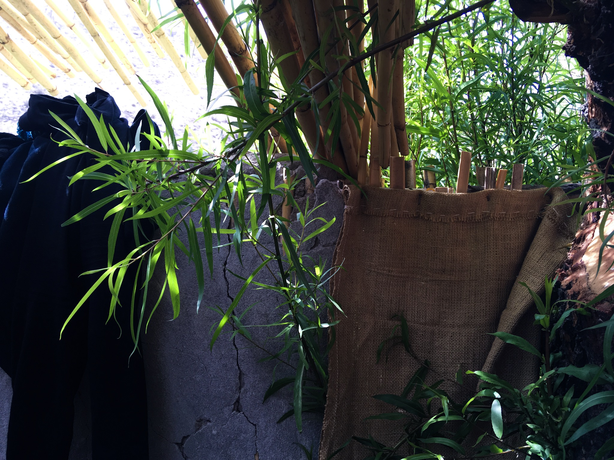 Doccia in bamboo