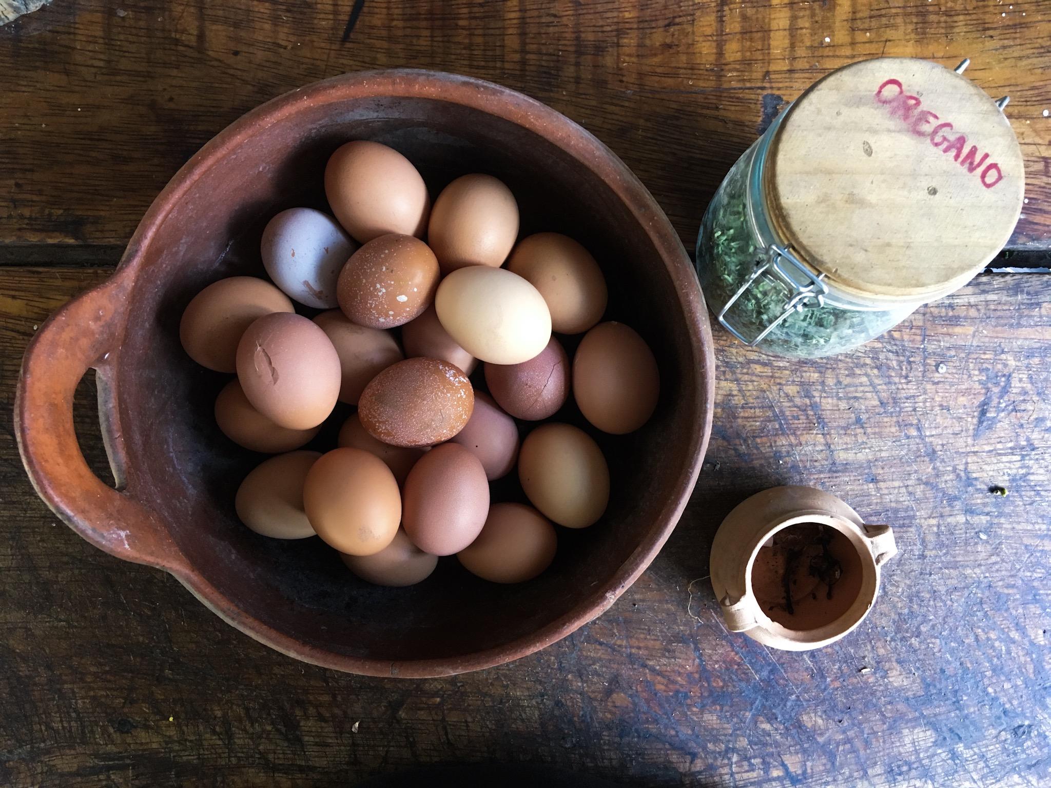 Uova fresche al mattino