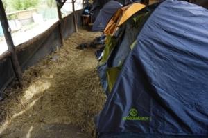 Tende e camping