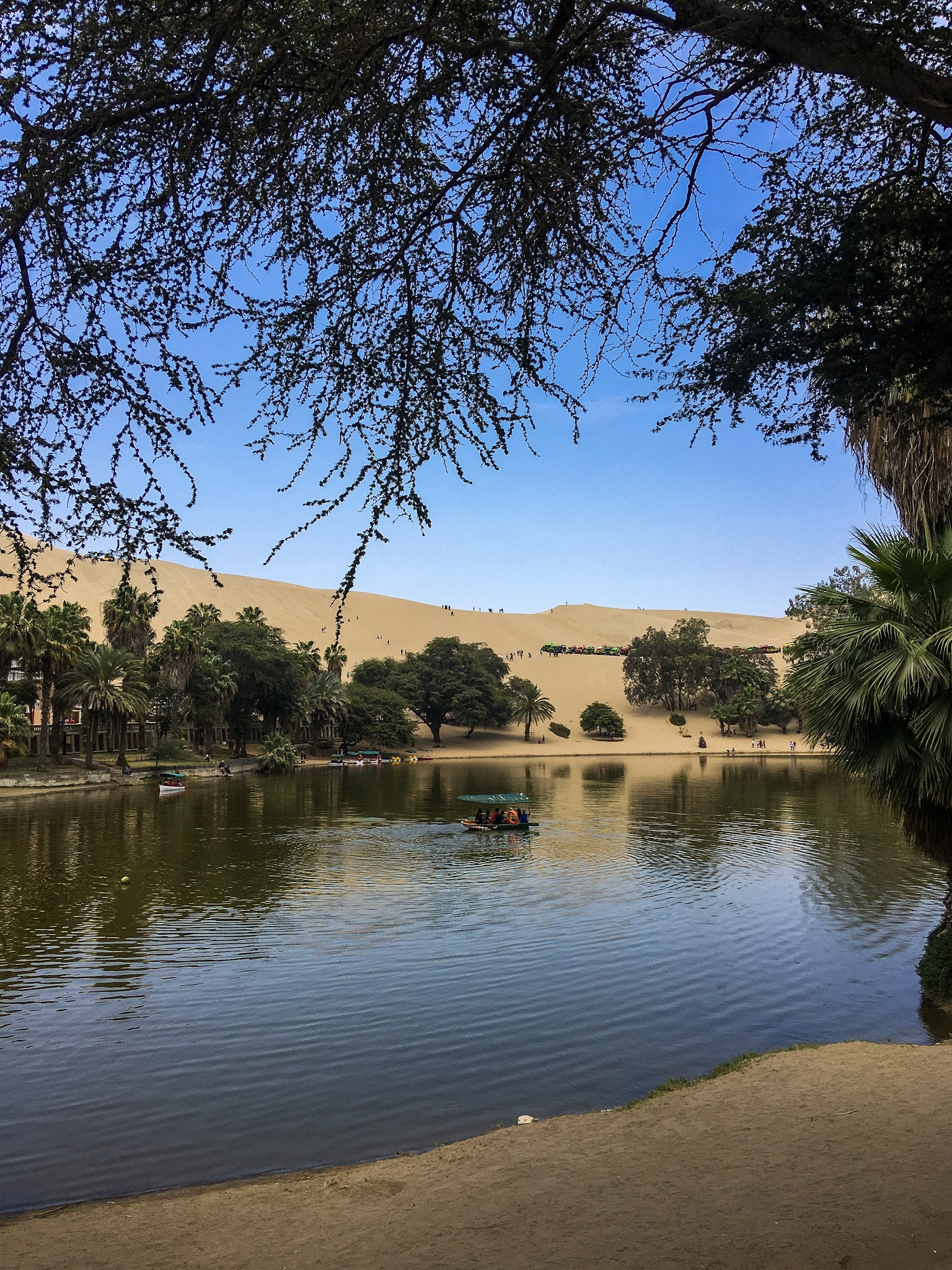 oasis di huacachina